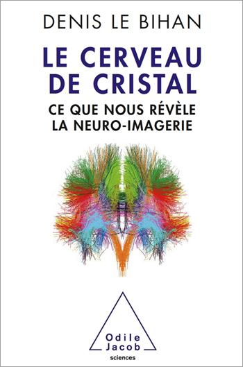 Cerveau de cristal (Le) - Ce que nous révèle la neuro-imagerie