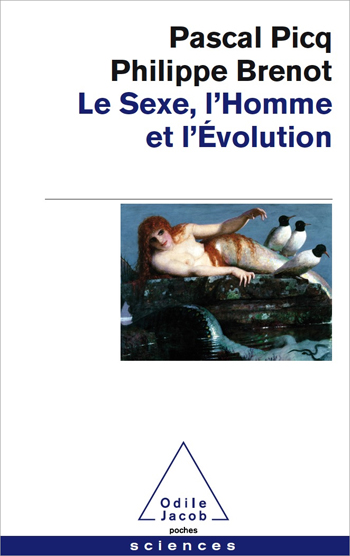 Sexuality, Human Being, Evolution