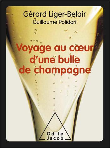 Voyage au cœur d'une bulle de champagne
