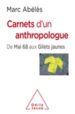 Carnets d'un anthropologue - De Mai 68 aux Gilets jaunes